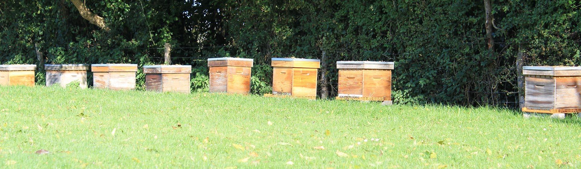 Beeculture devient Charozé